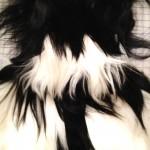 sara keiser Goat Vest at 3NY NYC
