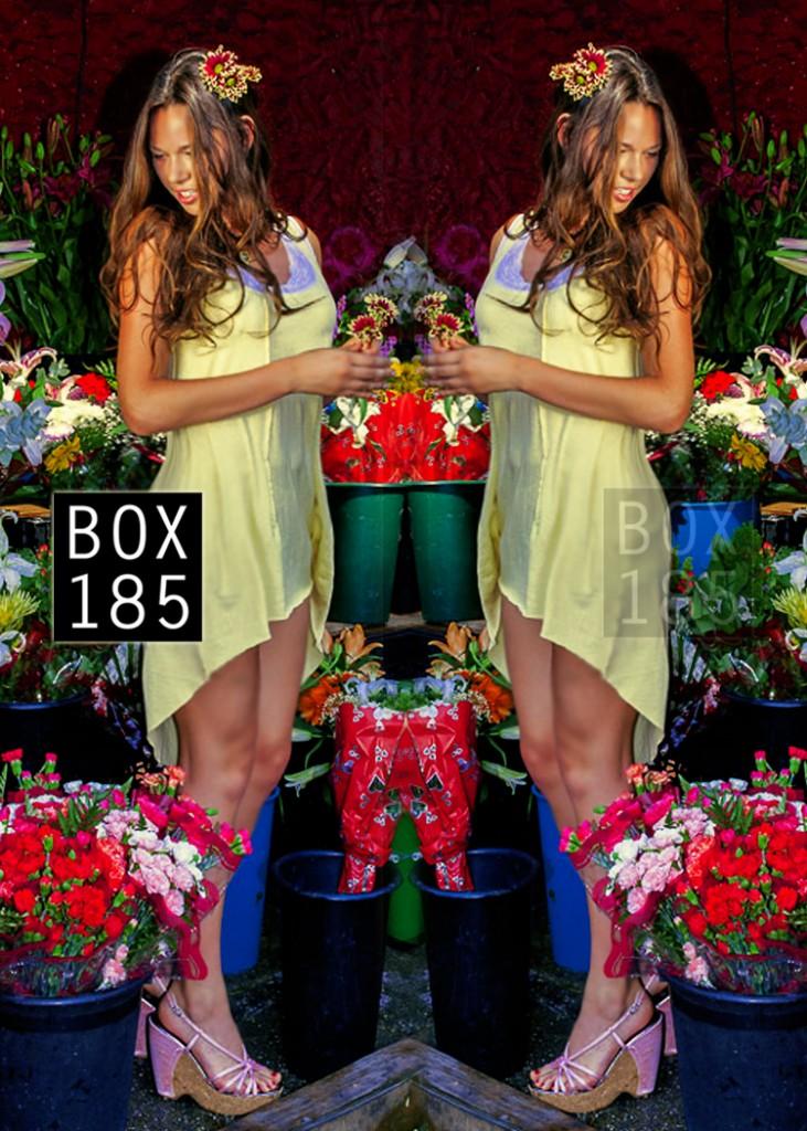 box 185 spring 2